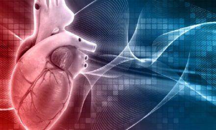 Cardiovascular Transformation Network